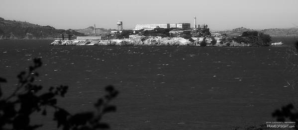 Bay Shots 9/3/2013